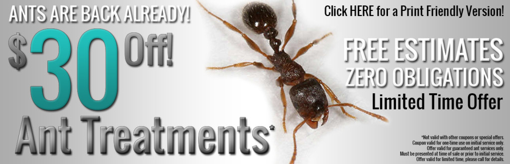 ANT PEST CONTROL SERVICE AD