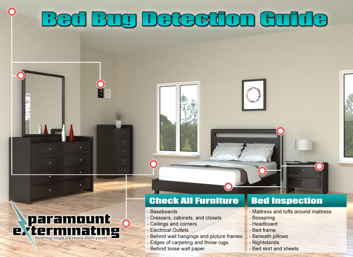 exterminator ant bug bed control woodbridge pest